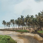 @instagram: Day 1: Went straight to Colva beach in South Goa from the airport.  A white sandy stretch lined up with swaying palm trees, a creek, beach shacks and restaurants (closed during monsoons), it was just the right therapy I needed.  #seastheday #perpetuallyta